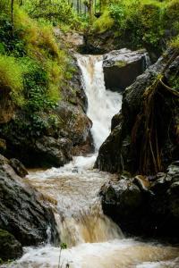 Nature Nirvana, Magánszobák  Attigundi - big - 7