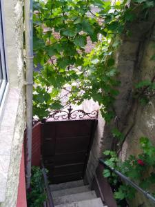 Dadu's Apartment, Апартаменты  Тбилиси - big - 39