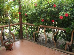 Sol de la Frontera, Hotely  Namballe - big - 11