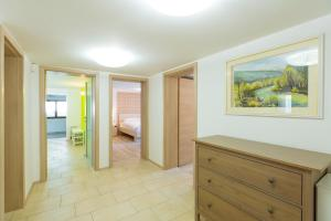 Apartments Burja