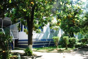 База отдыха Мия, Гудаута