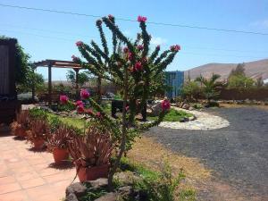 Casa Rural SoleaRio, La Oliva - Fuerteventura