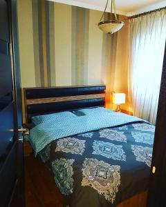 Mariana Apartment Borjomi, Apartments  Borjomi - big - 1