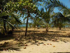 Reef Pasikudah, Guest houses  Nachivantivu - big - 6