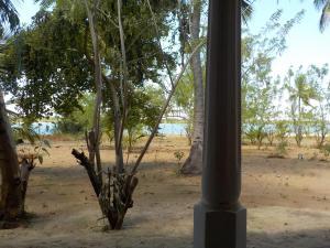 Reef Pasikudah, Guest houses  Nachivantivu - big - 7