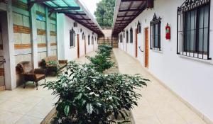 Hostal Casa San Miguel