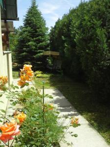 Oázis Vendégház, Holiday homes  Gyula - big - 22