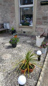 Kinloch Lodge - Accommodation - Inverness
