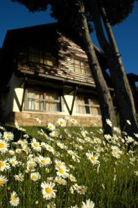 Hosteria Belvedere, Hostince  Villa La Angostura - big - 29