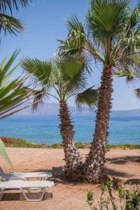 Balos Beach, Hotely  Kissamos - big - 195