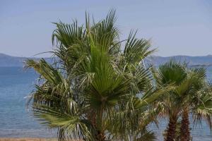Balos Beach, Hotely  Kissamos - big - 190