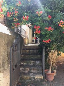 obrázek - Capalbio Characteristic Apartment