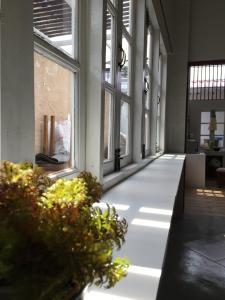 Tato House, Гостевые дома  Чиангмай - big - 22