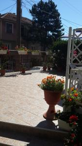 Guest House Ioanna, Обзор