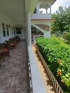 Polish Princess Guest House - Port Antonio