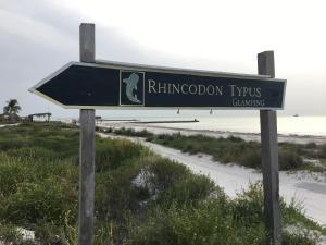 Rhincodon Typus, Hotely  Holbox Island - big - 1