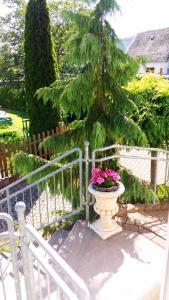 Ferienwohnung Eigner, Apartments  Traben-Trarbach - big - 1