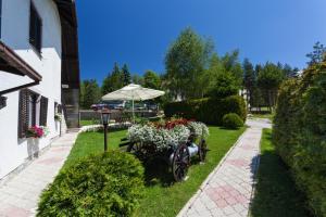 Vila Aleksandra, Апартаменты  Златибор - big - 62