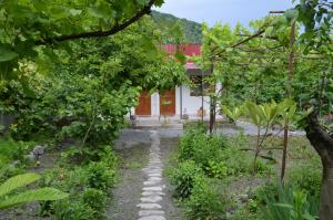 Ludwig Guesthouse, Penziony  Lagodechi - big - 40