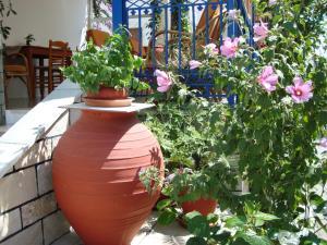 Vakhos, Hotels  Naxos Chora - big - 26