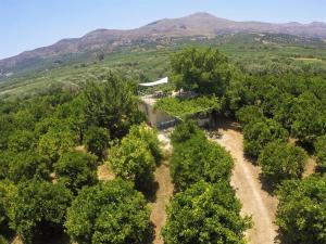 Hostels e Albergues - Farm House in Bio Οrange Plantation