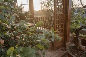 Zen Tea House Seven Stars Park, Bed & Breakfast  Guilin - big - 50