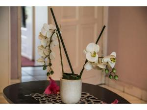 La Loggia Bed and Breakfast, Bed and Breakfasts  Durban - big - 83