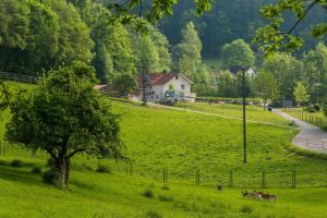 """""""Natur pur"""" Refugium für Mensch und Tier - Bitzenhofen"""