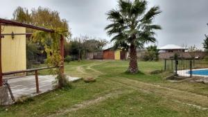 Casa Amarilla, Holiday homes  Maipú - big - 4