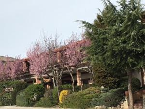 Hotel Rural El Valle - Sotosalbos