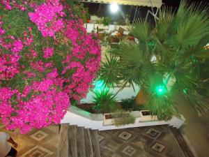sweetmemory Aegina Greece
