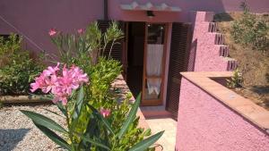 Appartamento L'Oleandro - AbcAlberghi.com