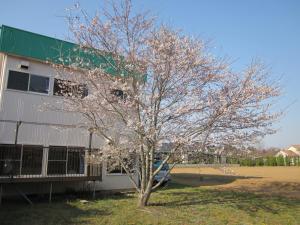 Auberges de jeunesse - Auberge Narita Airport
