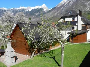 Apartments Mrakic - Bovec
