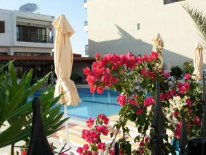 Hostels e Albergues - Philippos Studios & Apartments