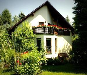 Ferienwohnung-Ginkgo-Dresden - Bannewitz