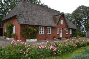 Rosenkate - Garding