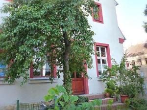 Pension Torgau Zimmer 8