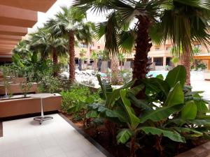 Oasis Palm Hotel, Hotely  Guelmim - big - 16