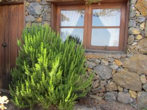 Casa rural La Jarita, El Pinar del Hierro - El Hierro