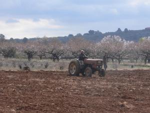 Pou De Beca Allotjaments i agroturisme, Agriturismi  Vall d'Alba - big - 23