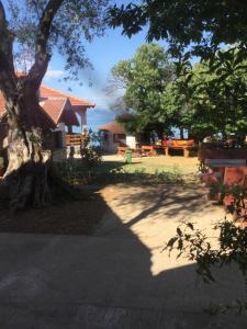 B&B Skadar Lake Murici, Bed & Breakfasts  Bar - big - 13