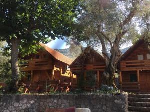 B&B Skadar Lake Murici, Bed & Breakfasts  Bar - big - 16