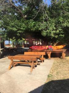 B&B Skadar Lake Murici, Bed & Breakfasts  Bar - big - 17