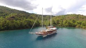 Barbaros Yachting Private Gulet 3 Cabins, Бодрум