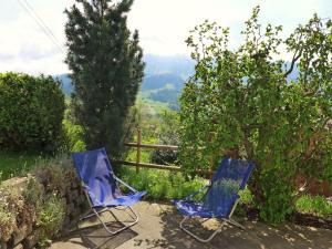 Chalet Papillon, Horské chaty  Schwanden - big - 13