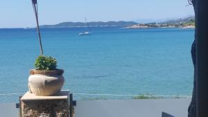 Epavlis Beach Resort Argolida Greece