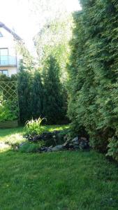 Dom z tarasem ogródkiem i słońcem