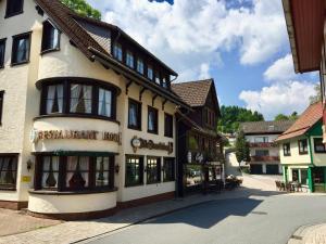 Landhotel Alte Aue - Hotel - Altenau