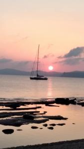 Hotel Petras Beach - Agia Fotia